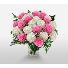 24 carnations in a vase